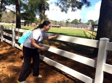 Kate cleans a fence.