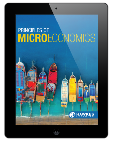 Principles of Microeconomics in iPad